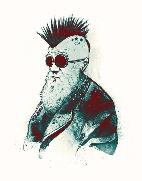 Punk Rock Darwin